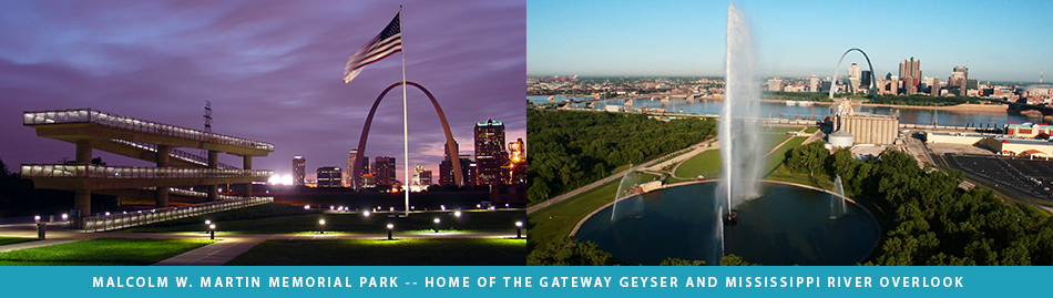 the gateway arch a biography about martin